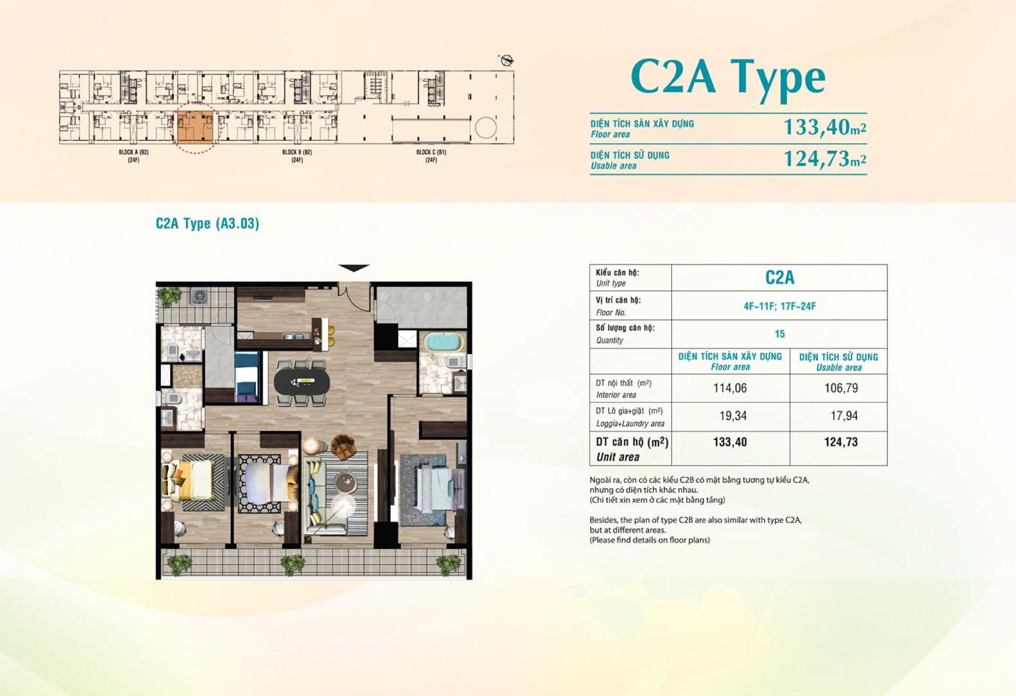type c2a