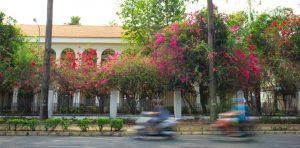 Phú Mỹ Hưng - Nơi những con đường chở đầy nỗi nhớ